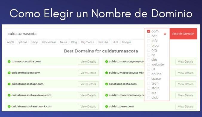 Como Elegir un Dominio Web Perfecto
